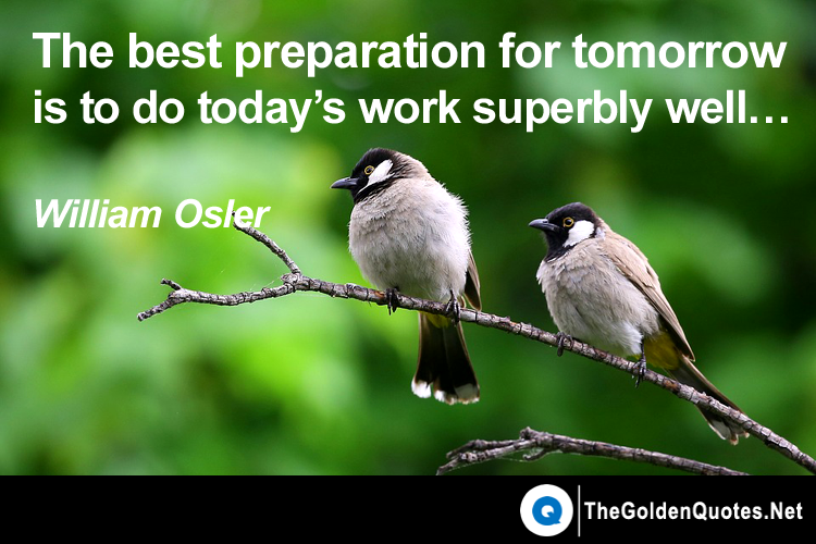 The Best Preparation For Tomorrow Is Doing Your Best Today: Get Inspired With Top 100 Picture Quotes